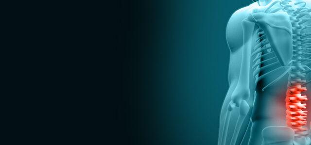 https://spineandbrainhealers.com/wp-content/uploads/2021/06/पीठ-दर्द-कैसे-ठीक-करें-640x299.jpg